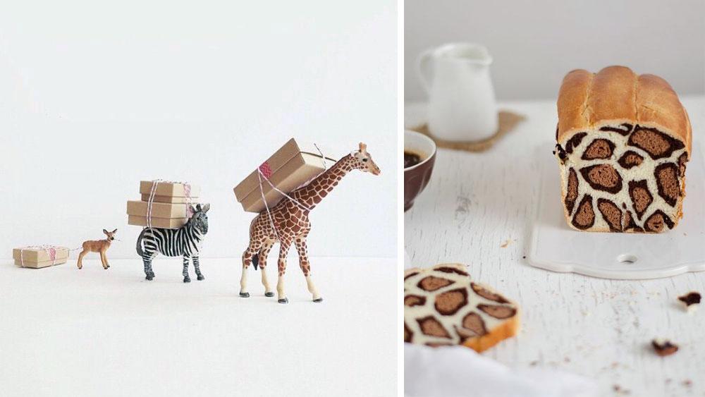 Geburtstagsideen-Giraffen